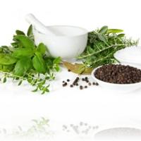 Top Ten Best Researched Herbs